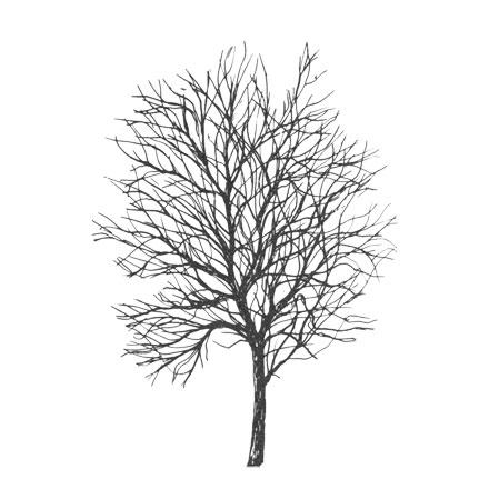 Arbre mort en hiver stylisé