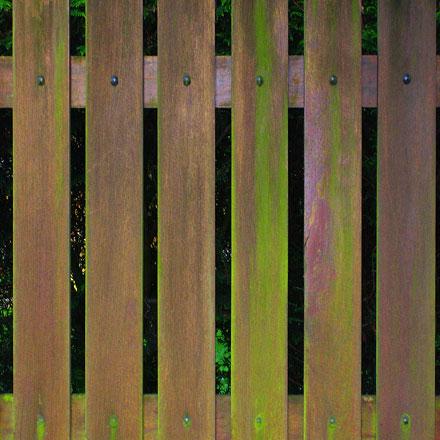 Clôture en bois verdie