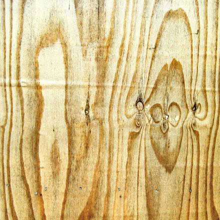 Nœuds du bois