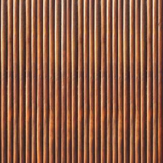 Palissade bois orangée