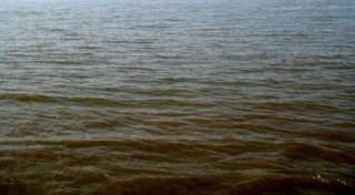 Surface d'un lac