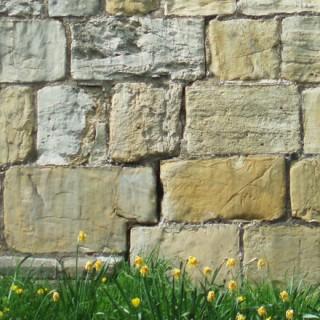Mur de pierres sèches irrégulières